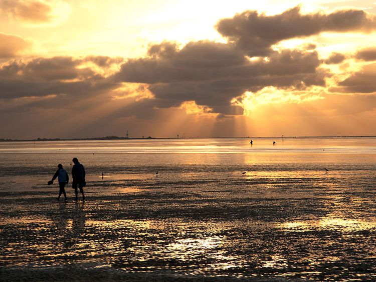 The Wadden Sea located in the North Sea is the world's largest