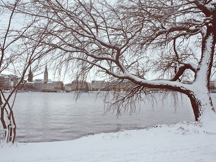 The Alster lake and the Hamburg skyline draped in snow