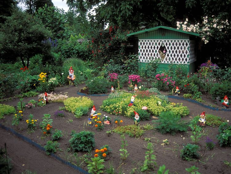 A German kleingarten with lots of garden gnomes.