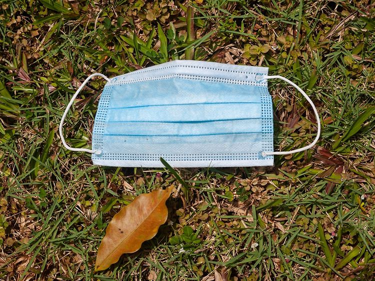 Disposable face mask on grass